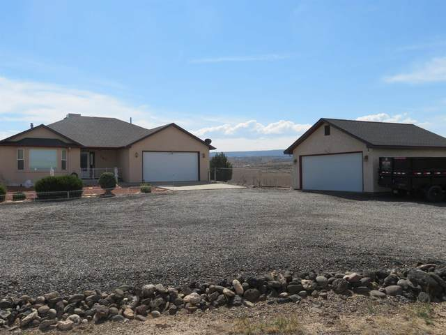 151 Eagle Trail Court, Whitewater, CO 81527 (MLS #20215217) :: The Joe Reed Team