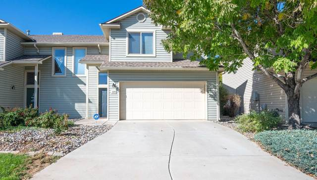 225 Sargent Circle, Fruita, CO 81521 (MLS #20215360) :: Lifestyle Living Real Estate