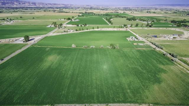 2146 1/2 M Road, Grand Junction, CO 81505 (MLS #20174365) :: The Christi Reece Group