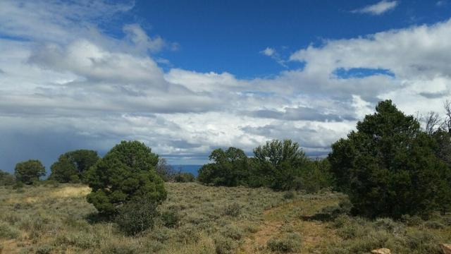TBD Elk Ranch Road Lot 7, Glade Park, CO 81523 (MLS #20174372) :: The Christi Reece Group