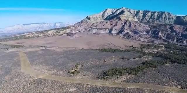 47901 V Road, Mesa, CO 81643 (MLS #20175682) :: CENTURY 21 CapRock Real Estate