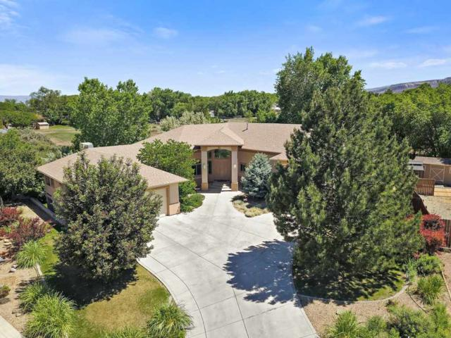 2073 Pannier Court, Grand Junction, CO 81507 (MLS #20176026) :: The Christi Reece Group