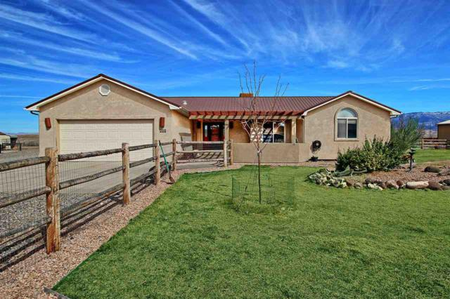 550 Red Tail Court, Whitewater, CO 81527 (MLS #20181102) :: The Christi Reece Group