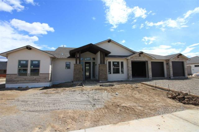 1568 Elmont Court, Fruita, CO 81521 (MLS #20182125) :: The Christi Reece Group
