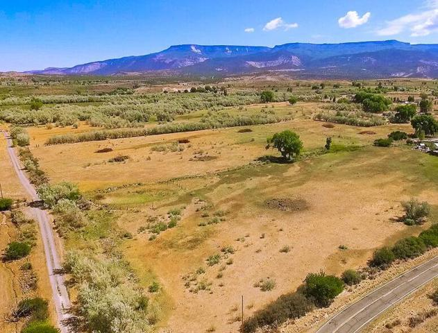 2400 Purdy Mesa Road, Whitewater, CO 81527 (MLS #20183982) :: The Borman Group at eXp Realty