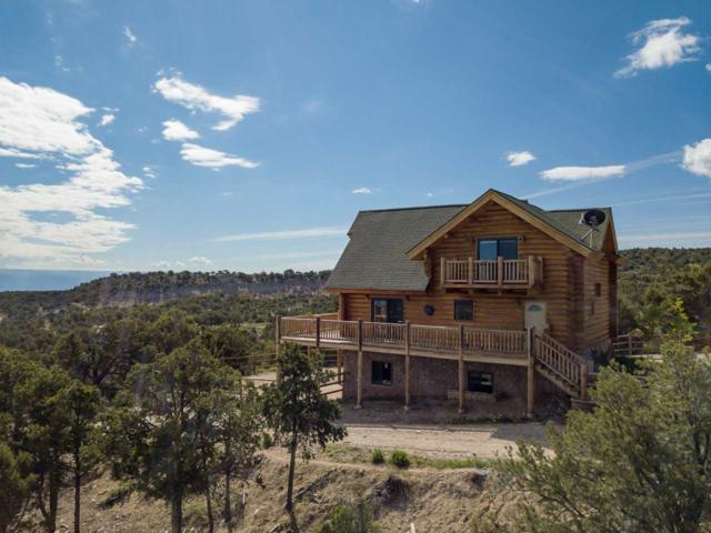 18342 Miller Canyon Ranch Road, Glade Park, CO 81523 (MLS #20186672) :: The Grand Junction Group with Keller Williams Colorado West LLC