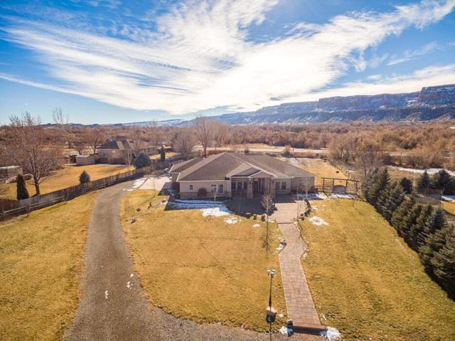 660 Independence Valley Drive, Grand Junction, CO 81507 (MLS #20190189) :: CapRock Real Estate, LLC