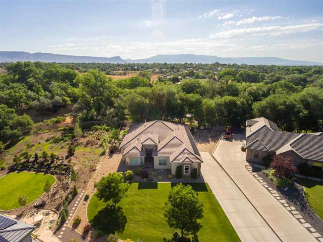 2585 Fox Run, Grand Junction, CO 81505 (MLS #20194062) :: The Grand Junction Group with Keller Williams Colorado West LLC
