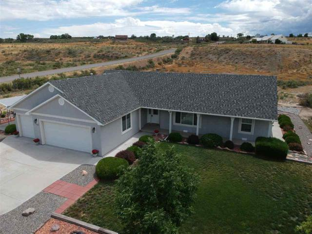 35495 Golden Eagle Court, Whitewater, CO 81527 (MLS #20194472) :: The Grand Junction Group with Keller Williams Colorado West LLC