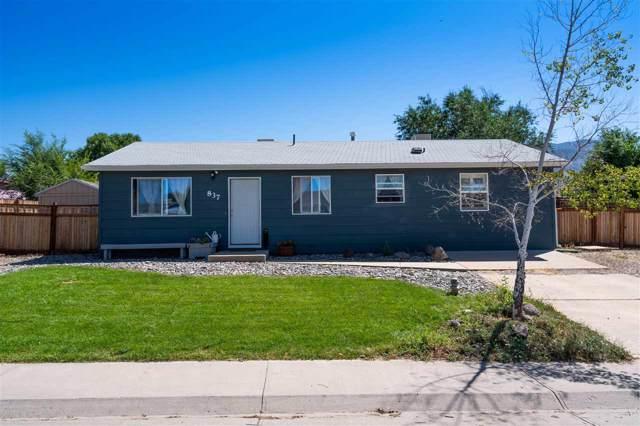 837 Logan Street, Palisade, CO 81526 (MLS #20194954) :: The Christi Reece Group
