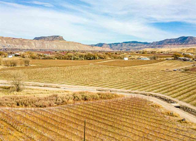 451 35 Road, Palisade, CO 81526 (MLS #20196289) :: The Grand Junction Group with Keller Williams Colorado West LLC