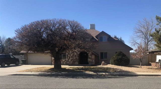 3915 Applewood Street, Grand Junction, CO 81506 (MLS #20200331) :: The Grand Junction Group with Keller Williams Colorado West LLC