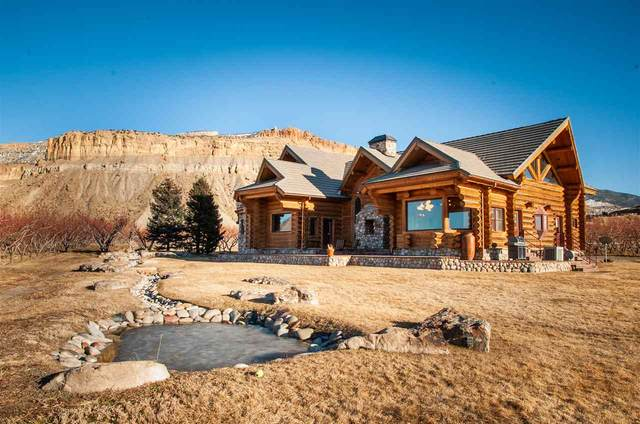 3875 F 3/4 Road, Palisade, CO 81526 (MLS #20200843) :: The Christi Reece Group