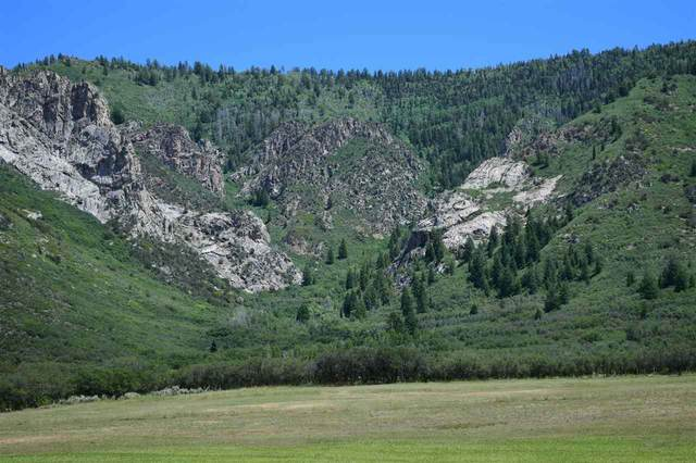 TBD Highway 141, Whitewater, CO 81527 (MLS #20201153) :: The Kimbrough Team | RE/MAX 4000
