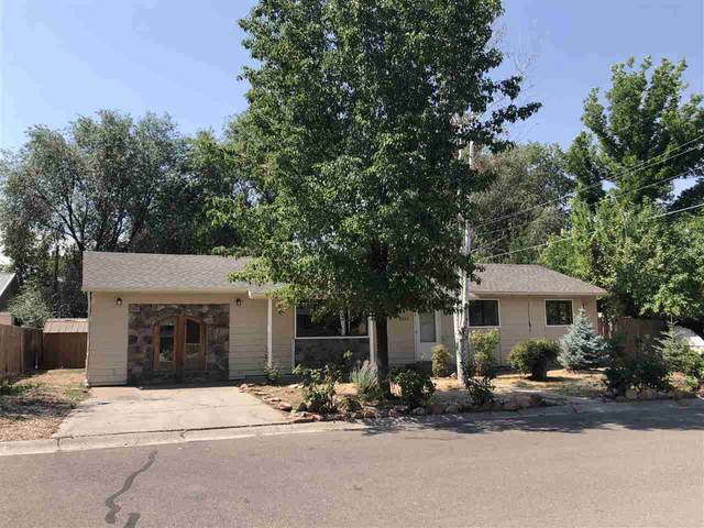 322 N Peach Way, Fruita, CO 81521 (MLS #20203170) :: The Danny Kuta Team