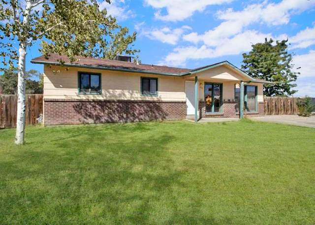 499 31 1/4 Road, Grand Junction, CO 81504 (MLS #20204868) :: The Christi Reece Group