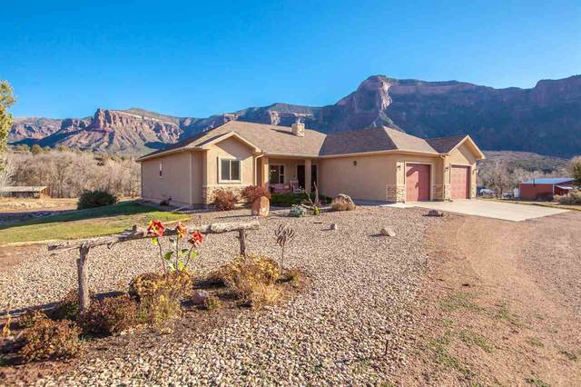 40799 Highway 141, Gateway, CO 81522 (MLS #20205703) :: The Christi Reece Group