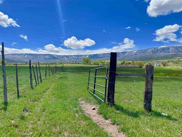 944 48 1/2 Road, Mesa, CO 81643 (MLS #20210643) :: Michelle Ritter