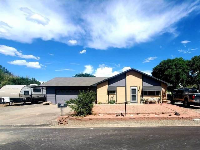 612 Hudsons Bay Drive, Grand Junction, CO 81504 (MLS #20213941) :: Lifestyle Living Real Estate
