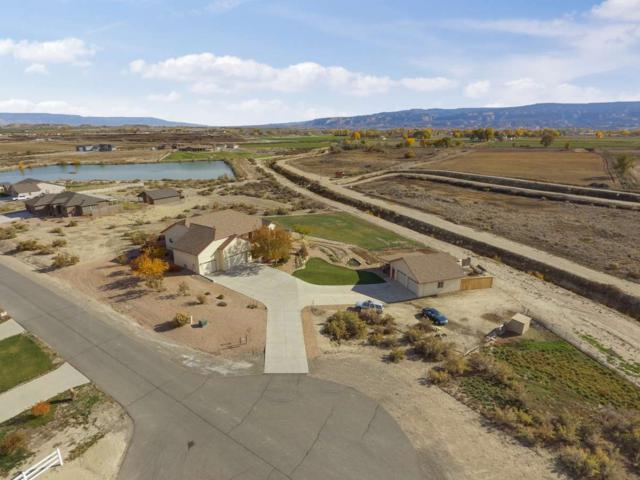 1307 Gold Lake Drive, Loma, CO 81524 (MLS #20186012) :: The Grand Junction Group