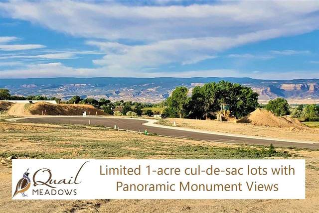 878 Quail Meadows Court, Grand Junction, CO 81505 (MLS #20192105) :: The Christi Reece Group