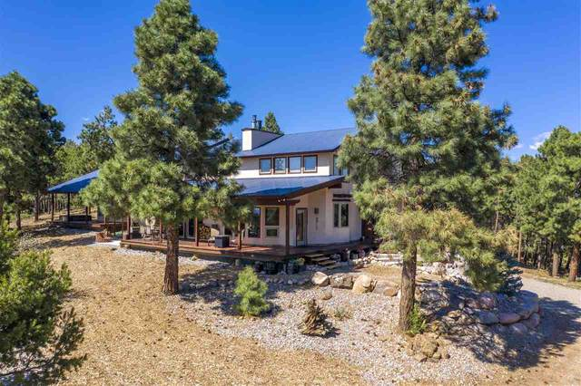 1350 Rincon Ridge Road, Durango, CO 81301 (MLS #20202786) :: CENTURY 21 CapRock Real Estate