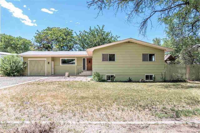 435 Gummere Road, Grand Junction, CO 81507 (MLS #20203288) :: The Christi Reece Group
