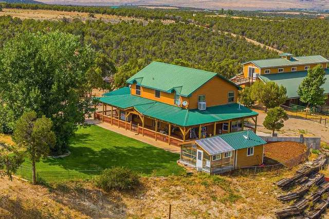2288 House Top Mountain Road, Parachute, CO 81635 (MLS #20203361) :: The Kimbrough Team | RE/MAX 4000