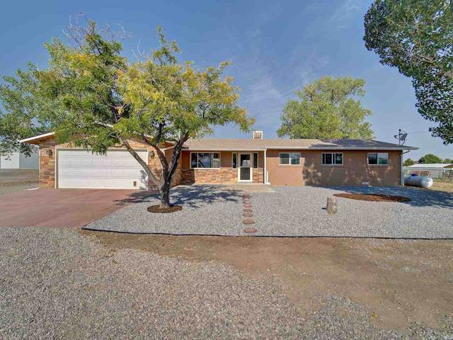 1247 12 1/2 Road, Loma, CO 81524 (MLS #20203562) :: The Kimbrough Team | RE/MAX 4000