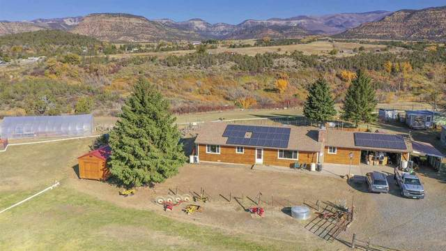 58746 Pe 3/10 Road, Collbran, CO 81624 (MLS #20204997) :: The Grand Junction Group with Keller Williams Colorado West LLC