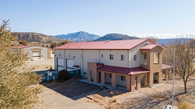 2181 & 2183 45 1/2 Road, De Beque, CO 81630 (MLS #20205491) :: The Joe Reed Team