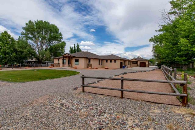 584 22 1/2 Road, Grand Junction, CO 81507 (MLS #20186499) :: The Christi Reece Group