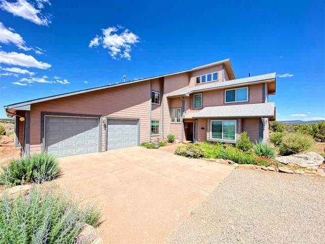 13741 Sage Brush Lane, Glade Park, CO 81523 (MLS #20201616) :: The Grand Junction Group with Keller Williams Colorado West LLC