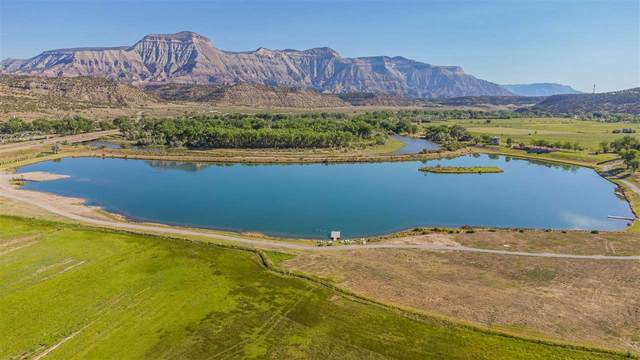 4642 Bass Lake Court, De Beque, CO 81630 (MLS #20211135) :: The Kimbrough Team   RE/MAX 4000