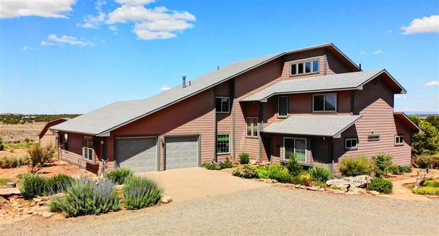 13741 Sage Brush Lane, Glade Park, CO 81523 (MLS #20201616) :: The Kimbrough Team | RE/MAX 4000
