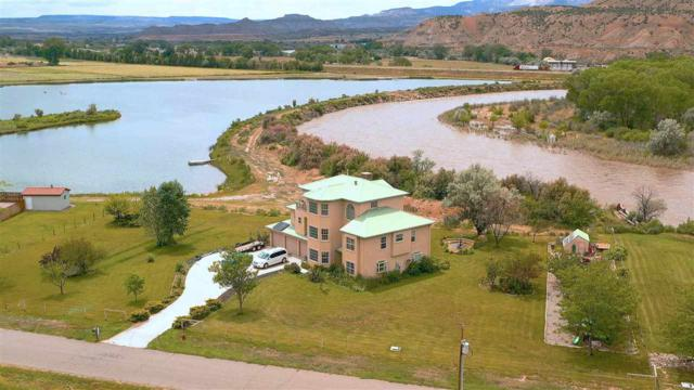 2391 46 1/2 Road, De Beque, CO 81630 (MLS #20190646) :: The Christi Reece Group