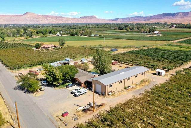 274 33 Road, Palisade, CO 81526 (MLS #20195674) :: The Christi Reece Group