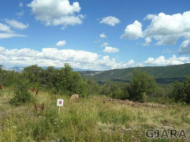 424 Coyote Run, Mesa, CO 81643 (MLS #20175837) :: The Grand Junction Group