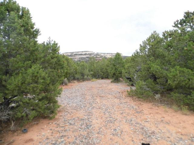 7081 Ds Road, Glade Park, CO 81523 (MLS #20180365) :: The Grand Junction Group