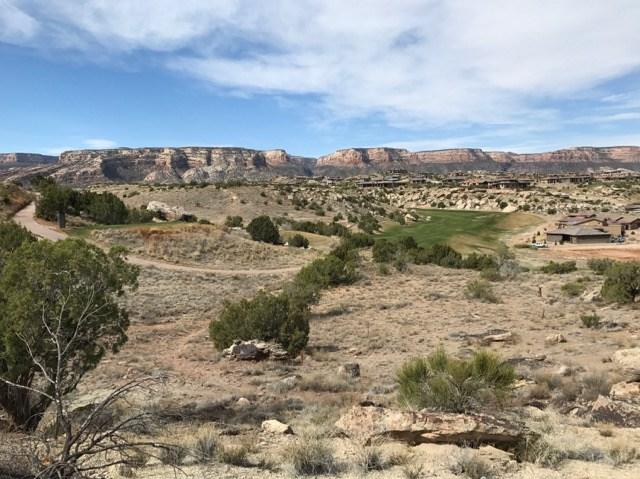 329 Redlands Mesa Drive, Grand Junction, CO 81507 (MLS #20181795) :: The Grand Junction Group