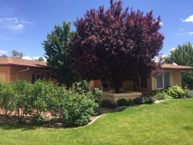 568 Casa Rio Court, Grand Junction, CO 81507 (MLS #20182930) :: CapRock Real Estate, LLC