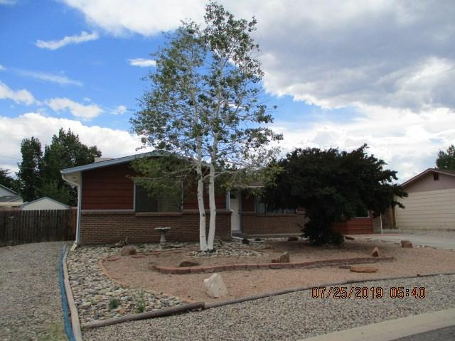 3177 William Drive, Grand Junction, CO 81503 (MLS #20194234) :: The Christi Reece Group