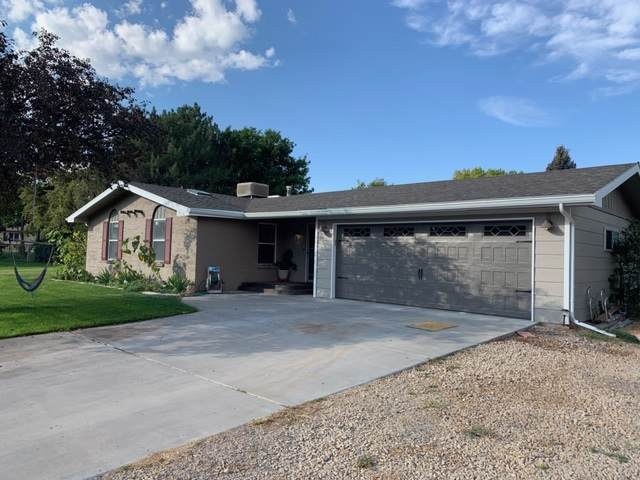 593 Briarwood Lane, Grand Junction, CO 81507 (MLS #20195241) :: The Christi Reece Group