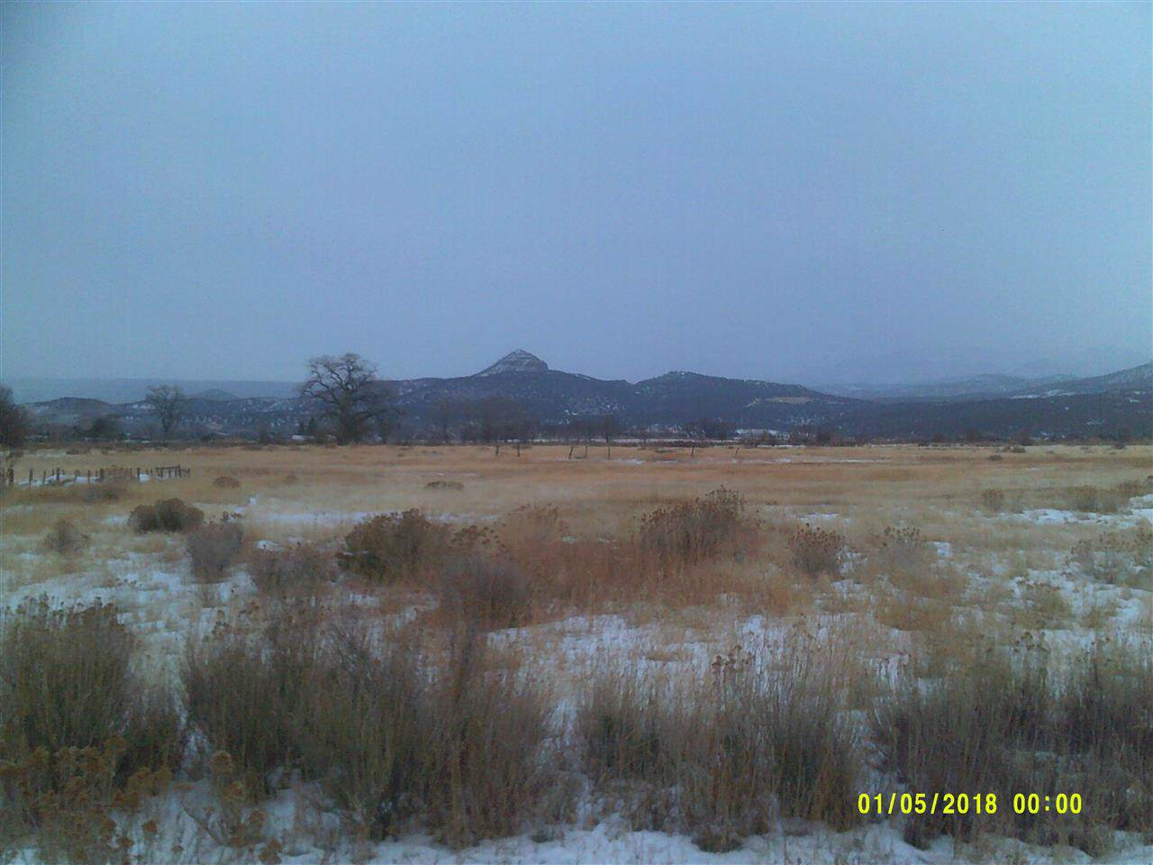 1088 Highway 65 - Photo 1
