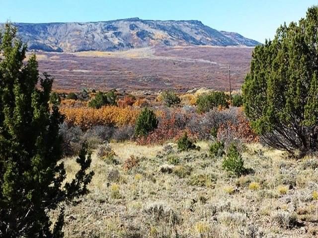 TBD Highway 65, Mesa, CO 81643 (MLS #20202181) :: The Christi Reece Group