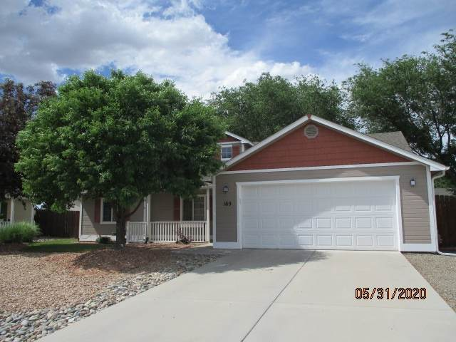 169 Chelsea Court, Fruita, CO 81521 (MLS #20202537) :: The Christi Reece Group