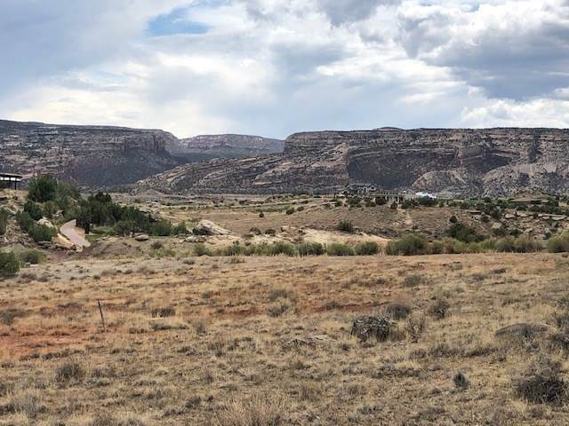 338 Redlands Mesa Drive, Grand Junction, CO 81507 (MLS #20203513) :: The Grand Junction Group with Keller Williams Colorado West LLC