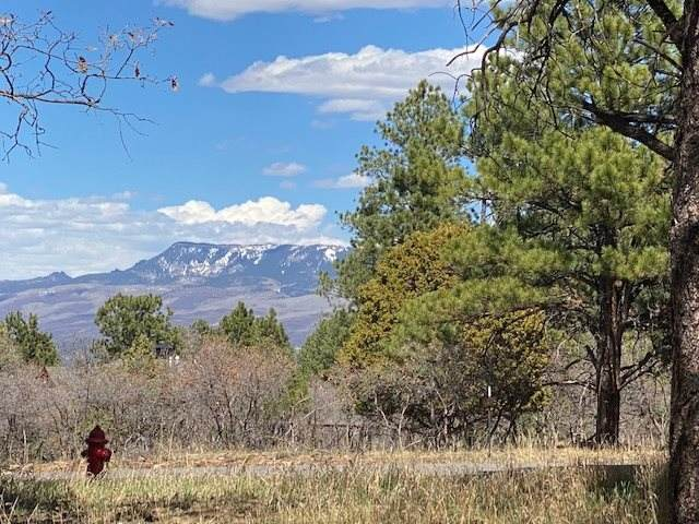 TBD S Badger Trail Lot 427, Ridgway, CO 81432 (MLS #20204799) :: Western Slope Real Estate