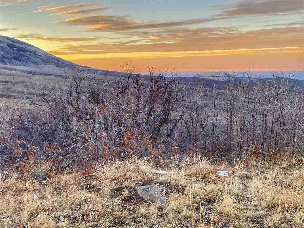 413 Coyote Run - Photo 1