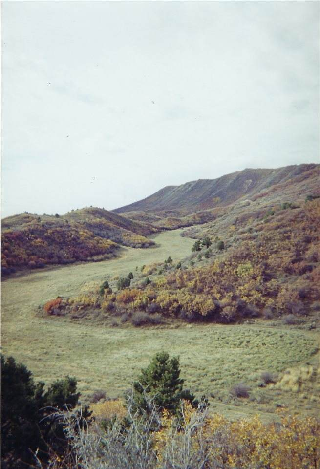 538 Little Rancho Drive - Photo 1